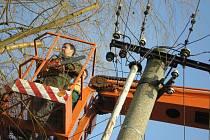 Ořez větví, které zasahují do elektrického vedení.