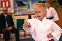 O víkendu se v Hodoníně konalo Mistrovství České republiky mládeže v karate.
