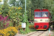 Unikátní Zahradní železnice 600 je světovou raritou, jezdí ve Vracově.