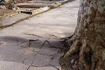 Současný stav chodníků na městském hřbitově v Hodoníně.