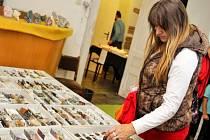 Třetí ročník burzy minerálů a fosilií v hodonínském Muzeu naftového dobývání a geologie.