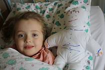 Děti v kyjovské nemocnici dostaly další várku kiwanis panenek. Ty slouží jednak k tomu, aby jim doktoři ukázali, jaká vyšetření je čekají, ale také si je mohou pokreslit a vzít domů. Do Kyjova zamířila i herečka Jitka Asterová, která je patronka projektu.