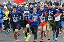 Maďarský vytrvalec László Gregor udolal současného nejlepšího českého půlmaratonce i maratonce Jiřího Homoláče. Mezi ženami zářila olympionička Eva Vrabcová Nývltová.