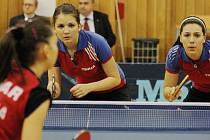Czech junior and cadet open v Hodoníně.