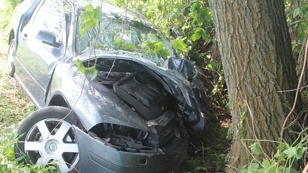 Muž středního věku nezvládl řízení a narazil do stromu.