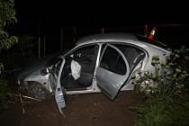 Renault prorazil plot a skončil na zahradě.