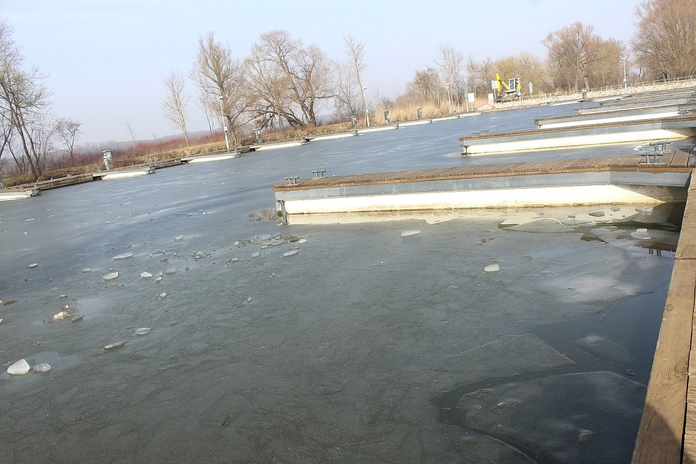 Mezi zamrzlým přístavem v Petrově a Strážnicí začaly práce na nové cyklotrase.