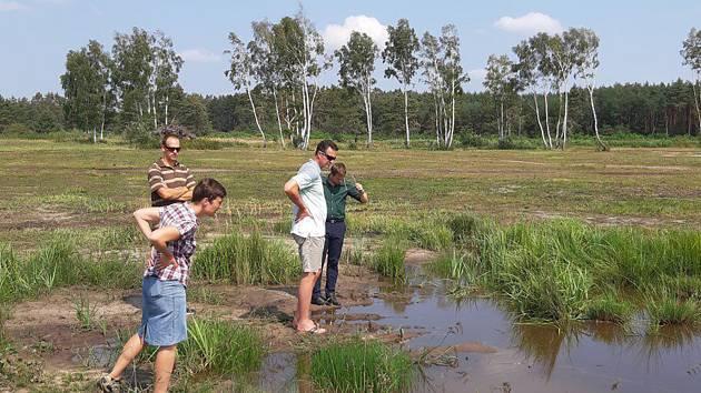 Obnova přírodní památky a součást rozsáhlé evropsky významné lokality Hodonínská dúbrava pokračuje.