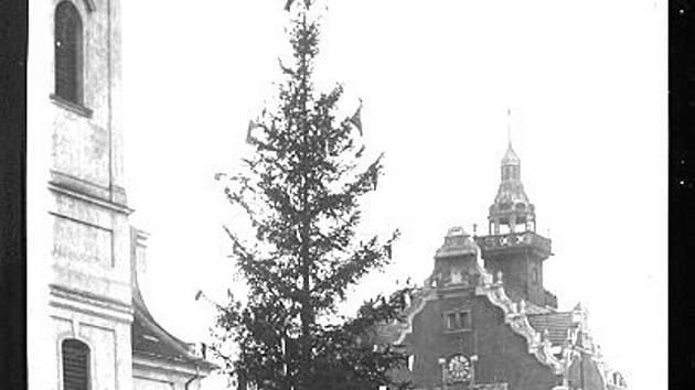 Strom na pohlednici.