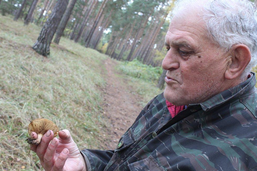 Na houbách s Václavem Koplíkem v lesích ratíškovické Dúbravy.