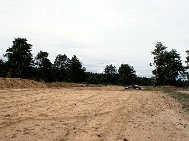 Vojenské cvičiště uBzence dodnes připomíná, jak vypadala krajina Moravské Sahary na Hodonínsku. Ikdyž je to převážně písek bez vegetace, žijí tam chráněné druhy.