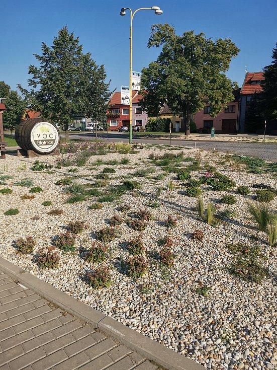Nově vysazené rostliny zvelebují blatnické ulice.