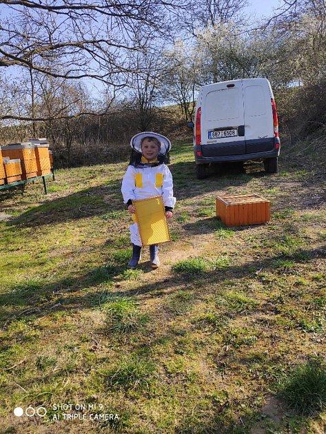 UŠafářů se včelaří už od mala.