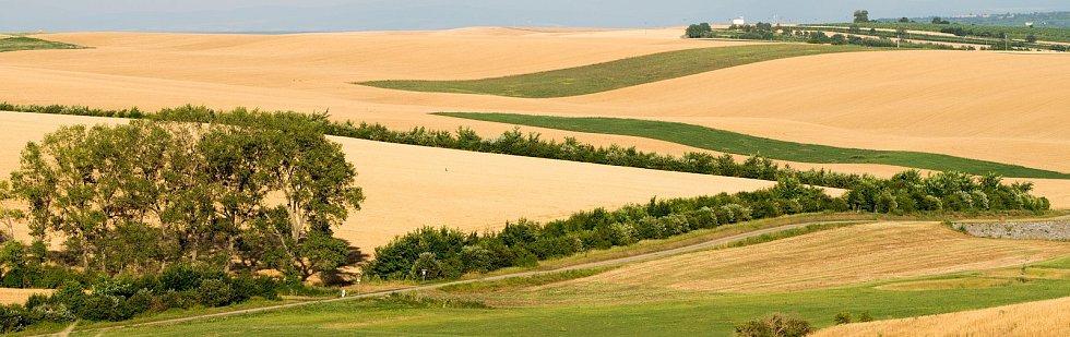 Do krajiny vrací vodu i život, budování biokoridorů je v kurzu. Na snímku biokoridor v Šardicích na Hodonísku.