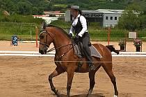 V moderním areálu Jezdecké stáje Bzenec se v sobotu uskutečnily celostátní závody ve Working Equitation.
