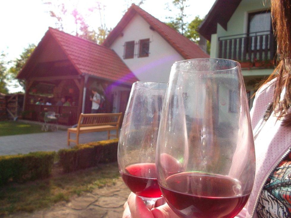 Festival otevřených sklepů ve Skoronicích.