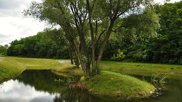 Do krajiny vrací vodu i život, budování biokoridorů je v kurzu. Na snímku biokoridor v Borkovanech na Břeclavsku.