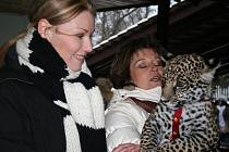 Křest jaguára v hodonínské zoo