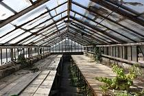 Na zámku v Miloticích staví nové skleníky.