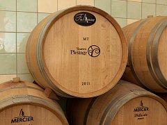 Pokora k přírodě. To je pravidlo pětačtyřicetiletého vinaře Michala Plešingra. I když v práci nepije, doma večer si s chutí dá dvě deci pro zdraví. Vína si vybírá podle ročního období – přes léto bílé a růžové, v zimě pak červené.