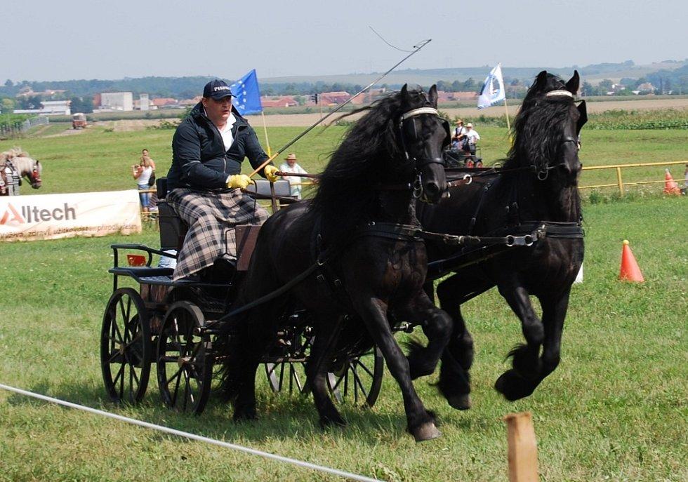 Stáj Terezovský dvůr uspořádala první roční vozatajských závodů. Přišly stovky lidí.