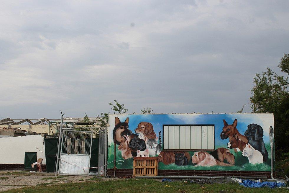 Zbytky tornádem poničeného útulku pro psy v Hodoníně, tři týdny pro katastrofě.
