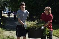 Studenti v Hodoníně pomáhají zkrášlit město.