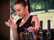 Dvanáct moravských vinařství pohostilo návštěvníky Slovanského hradiště v Mikulčicích. Příchozí navíc mohli zavítat na prohlídku archeologického památníku nebo si vyzkoušet některou z aktivit programu Těšíme se na prázdniny.