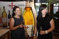Nový český rekord v počtu připíjejících si z jedné lahve vytvořili hosté slavnostního večera v Templářských sklepech Čejkovice.