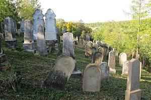 Pět památek z Hodonínska letos soutěží o Nejlépe opravenou památku Jihomoravského kraje. Své zástupce má v soutěži Veselí nad Moravou, Šardice a Dambořice.