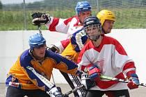Znorovská hokejka 2010.