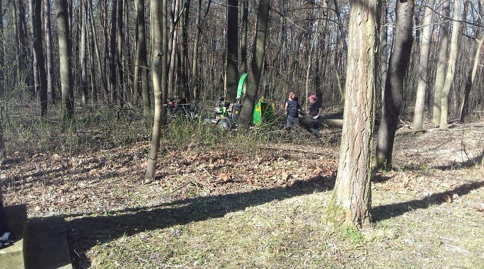 Teď můžete pracovníky služeb obce Blatnice  potkávat v lese na Antonínku, čistí i okolí Křížové cesty
