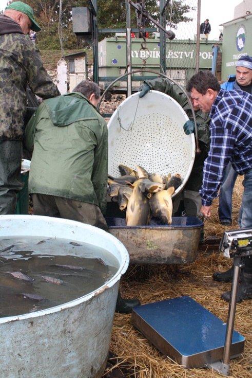 Stovky lidí s kýbly dorazily k vodní nádrži Blatnička. Chtěly kapry, amury, candáty i sumce. Dočkaly se také vodníka