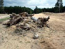 Vojenské cvičiště u Bzence dodnes připomíná, jak vypadala krajina Moravské Sahary na Hodonínsku. I když je to převážně písek bez vegetace, žijí tam chráněné druhy.