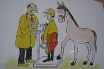 Koně a humor v kyjovské škole