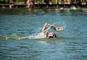 Celkem se třetího ročníku veřejných plaveckých závodu na otevřené vodě s názvem Lužická míle zúčastnilo 103 mužů, žen a dětí.