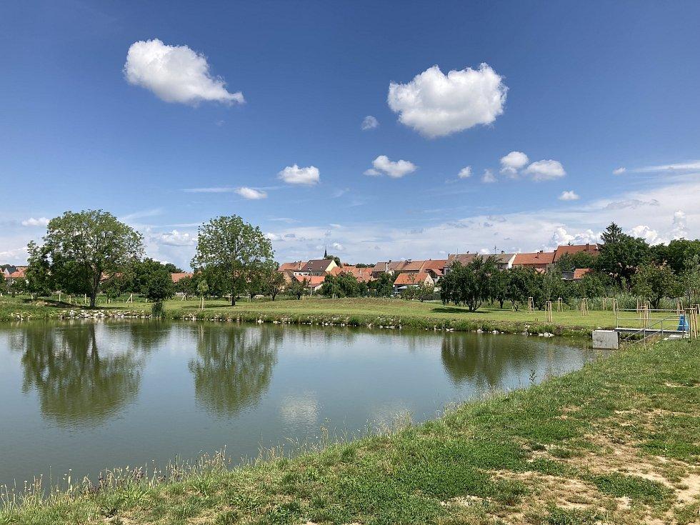 Nová výsadba u rybníčku v Mistříně Na Dolině.