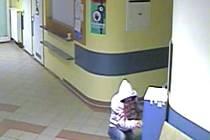 Zloděj, který vykradl kasičku veřejné sbírky v hodonínské nemocnici.