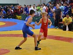 Mladí zápasníci oddílu TJ Sokol Hodonín.