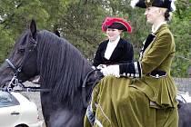 Den koně (2008) - ilustrační fotografie.