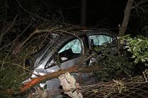 Téměř dvě promile alkoholu naměřili policisté řidiči, který před Strážnicí nevybral zatáčku a skončil ve stromě.