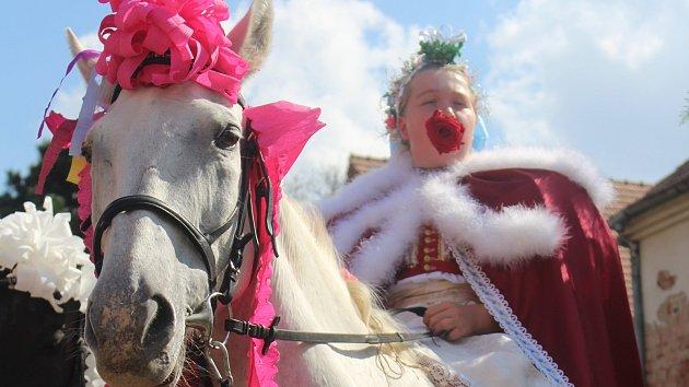 Jízda králů obnovuje paměť dědiny. Šimona s růží v ústech doprovázelo 26 koní