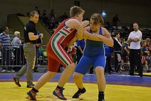 Uspěšná výprava hodonínských zápasníků vybojovala na jubilejním desátém ročníku Memoriálu László Sillaie v maďarském Györu dvanáct medailí.