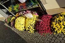 Zatímco venku přibývá chladu, blíží se čas dušiček a obchody nabízejí nepřeberné množství různobarevných podzimních chryzantém a další příhodné zboží.