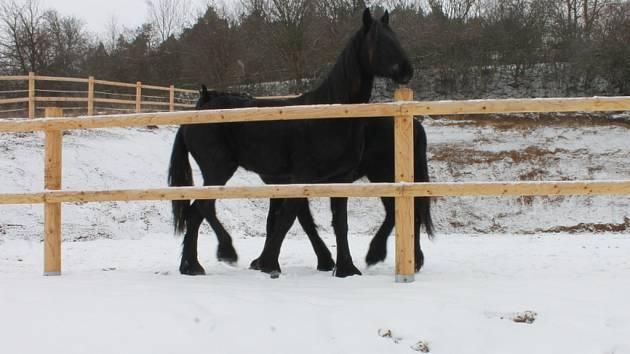 Areál pro koně, který vzniká v Ráječku.