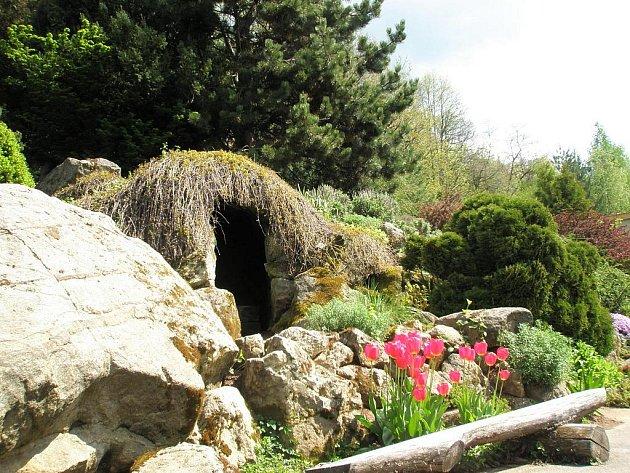 Borotínské arboretum. Ilustrační fotografie.