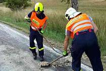 Znečištěnou silnici od kafilerních zbytků uklízeli kolem čtvrtečního poledne hasiči na silnici u Černé Hory.