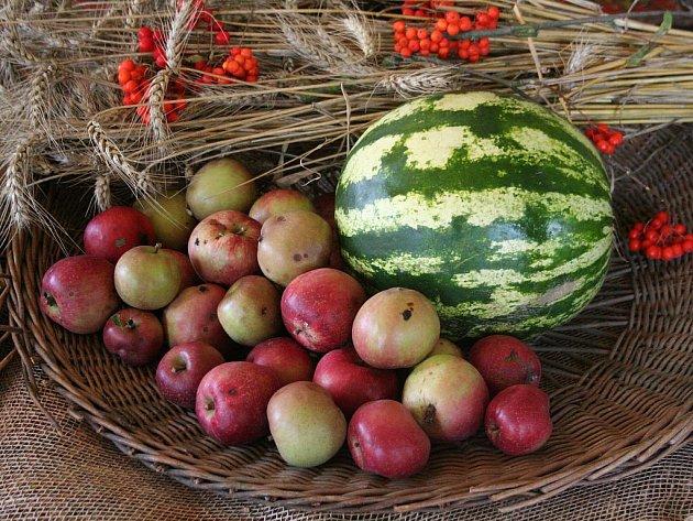 Výstavu květinových a ovocných aranžmá mohou až do neděle navštívit lidé na zámku v Lysicích.