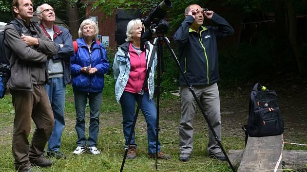 René Bedan pozoroval a vyfotografoval v Moravském krasu sokoly stěhovavé, kteří se do této lokality vrátili po několika desetiletích. Sledoval i mláďata.