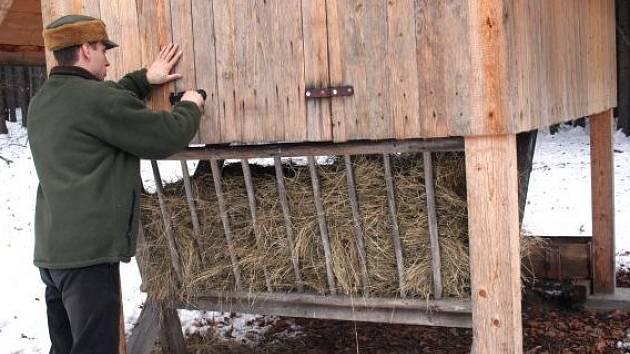 Na cesty ke krmelcům museli myslivci vytáhnout lyže i sněžnice